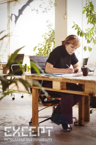 Pallet Furniture Office - Working hard in a soft environment