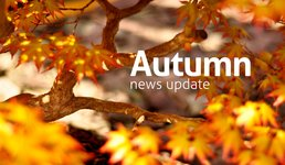 Early Autumn 2013 News Update