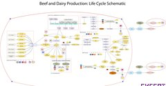 Beef and Dairy industry map