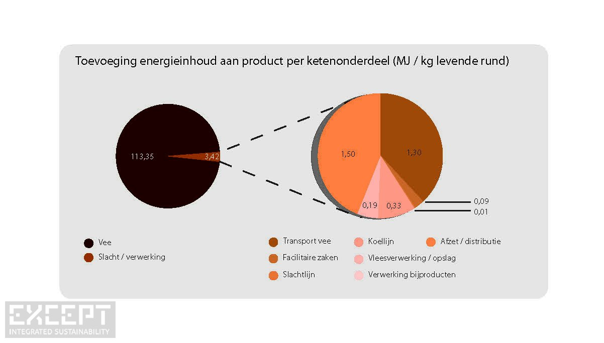 Beef energy breakdown - Energiegebruik in vee production