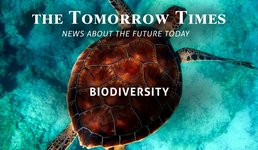 the Tomorrow Times -  UN: Critical Biodiversity Limits Reached - June '19