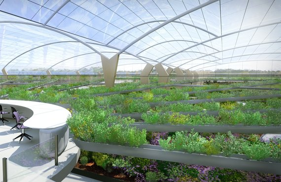 High performance agriculture ecosystems