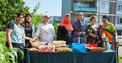 Celebrating the harvest in Schiebroek-Zuid