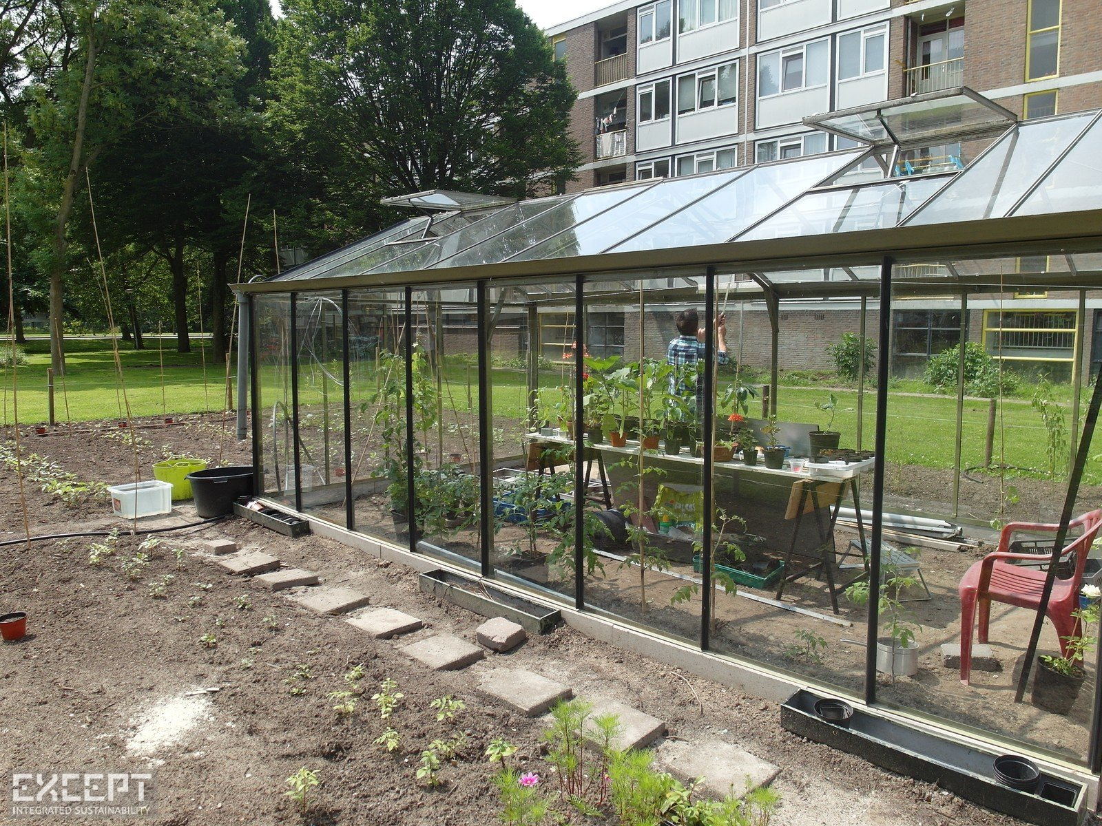 An urban greenhouse in Schiebroek-Zuid - In this Urban Greenhouse baby plants are incubated to spread around the neighborhood.