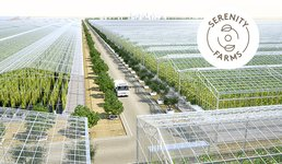 Sustainable Food in the Desert