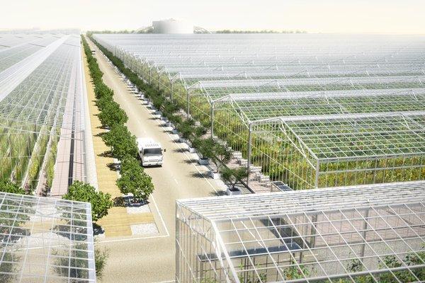 Serenity Farms