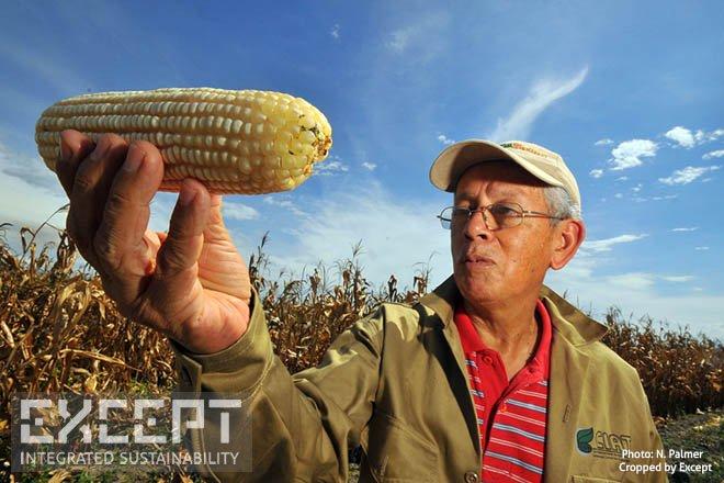 Farmer -