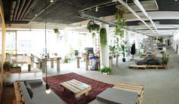 Sustainable Office Interior