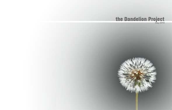 Dandelion - The Dandelion Project