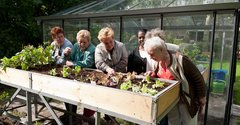 Seniors enjoying their green house in Schiebroek-Zuid