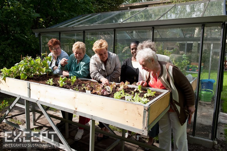 Seniors enjoying their green house in Schiebroek-Zuid - Senoirs enjoying their green house in Schiebroek-Zuid