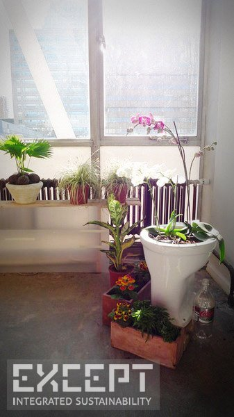 Reused materials - Toilet Ikebana